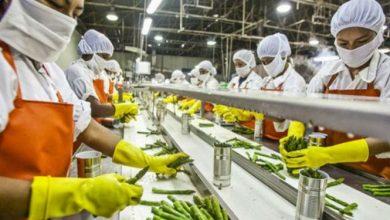 Photo of खाद्य प्रसंस्करण उद्योगों में प्रशिक्षित कर लोगों को दिया जा रहा है रोजगार