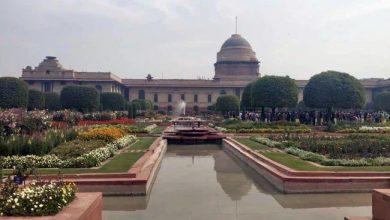 Photo of मुगल गार्डन: पर्यटकों के लिए इस दिन से खुलेगा राष्ट्रपति भवन का मुगल गार्डन, जानें क्या होंगे नियम