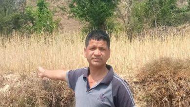 Photo of उत्तराखंड प्रगतिशील पार्टी ने लोहाघाट के खराही में हुए फसलों की बर्बादी पर लोगों से मुलाकात की