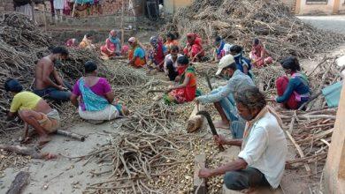 Photo of महाराष्ट्र में वन धन केंद्र : आजीविका और जीवन को बदलने में सहायक सिद्ध हो रहे हैं