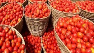 Photo of UP: सस्ते दामों में सब्जी खरीद रहे आढ़तिए, किसानों ने सड़क पर फेंकी फसल