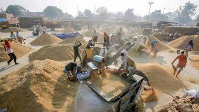 Photo of प्रदेश सरकार द्वारा अभी तक 622 लाख कु0 धान किसानों से खरीदा गया है, जो पिछले वर्ष से लगभग डेढ़ गुना अधिक है: नवनीत सहगल