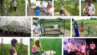 Photo of गोरखपुर के बाढ़ पीड़ित किसानों के बीच अब उम्मीद की किरण जगमगाने लगी है
