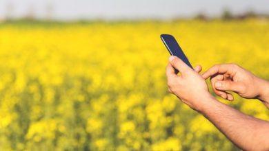 Photo of मोबाइल ऐप से किसान अपने मोबाइल पर गेहूँ क्रय केन्द्रों की लोकेशन ज्ञात कर सकते हैं