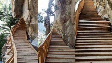 Photo of नए स्वरूप में बनकर तैयार हुई उत्तरकाशी के नेलांग घाटी में स्थित गरतांग गली की सीढ़ियां